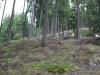 EWW15_36