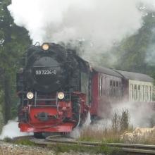 harz-161