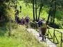 Erlbacher Wanderwoche 2012