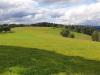 Erlbacher-Wanderwoche-2021-10.jpg