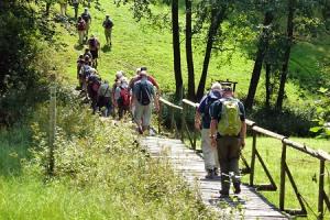 Erlbacher Wanderwoche